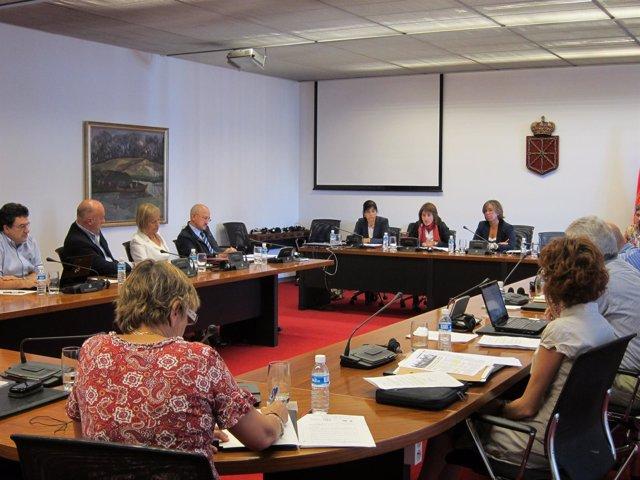 La Consejera Marta Vera En El Parlamento De Navarra.