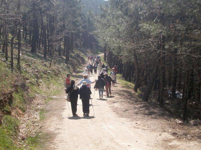 Caminado en una ruta de senderismo