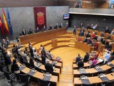 Pleno Conmemorativo Del 30 Aniversario Del Amejoramiento.
