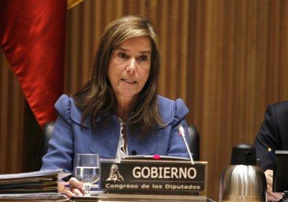 Mato dice que la introducción del euro por receta en toda España se valorará si lo proponen las CCAA