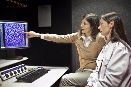 Investigadores del CNIO participan en el estudio sobre medicina personalizada más completo realizado hasta la fecha