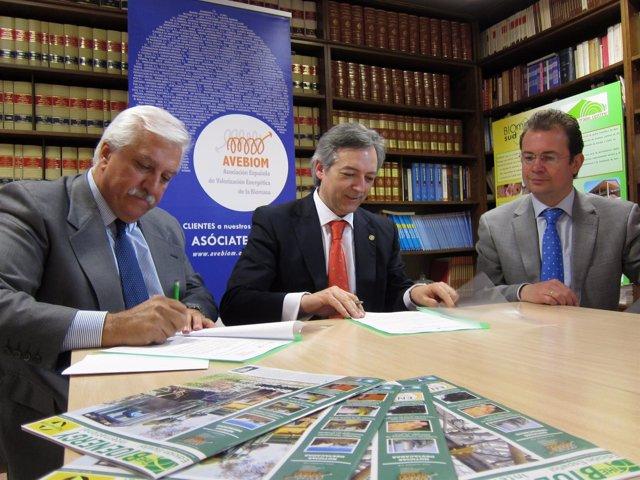 Avebiom Y Remufor Firman Un Convenio Para Promover La Biomasa En Ámbitos Rurales