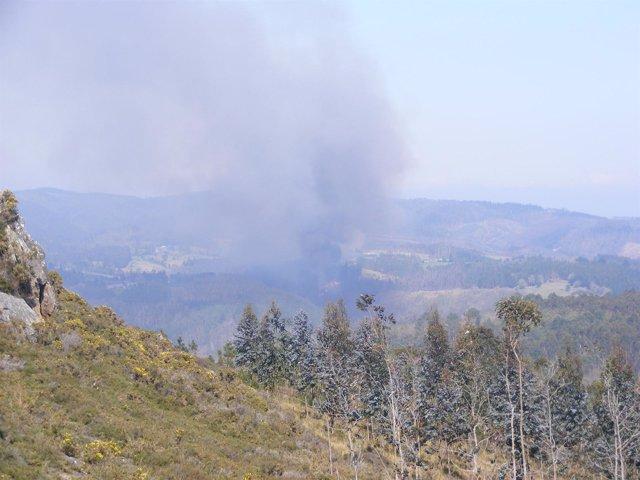 Incendio En Monfero, Fragas Do Eume
