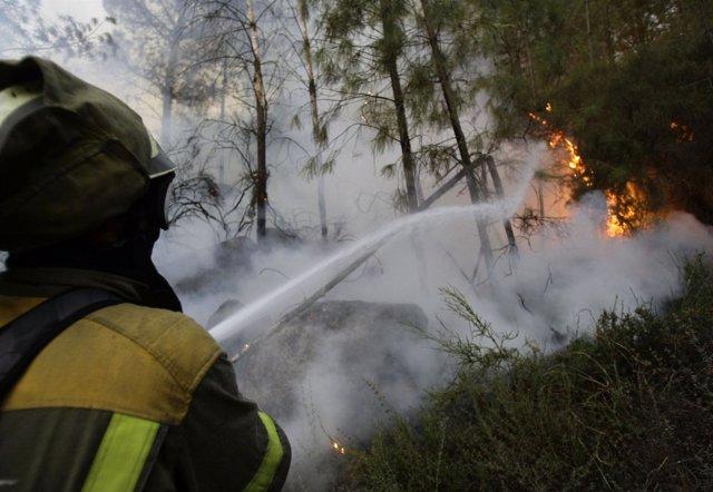 Incendio Forestal En Vilariño De Conso, Ourense (Galicia)