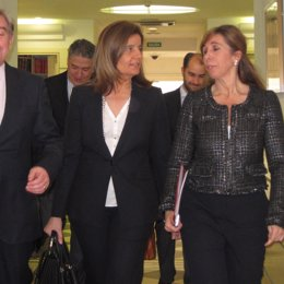 Ministra De Empleo, Fátima Báñez, En El Senado