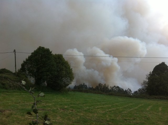 Incendio En Las Fragas Do Eume, En A Capela