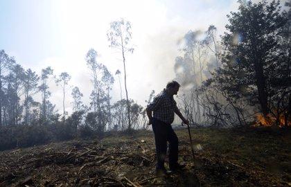 Extinguido el incendio registrado en A Capela (A Coruña) que afectó a las Fragas do Eume