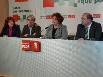 """PSOE critica el """"frenazo salvaje"""" en inversión de los presupuestos, que crearán """"más paro"""""""