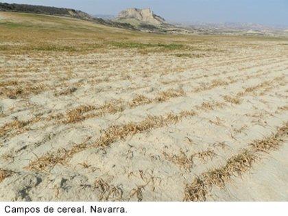 La Federación Rural Galega pide que se declare zona catastrófica a Galicia por la sequía