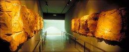 Museo Altamira