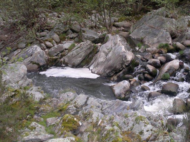 Imagen Del Río Arenal