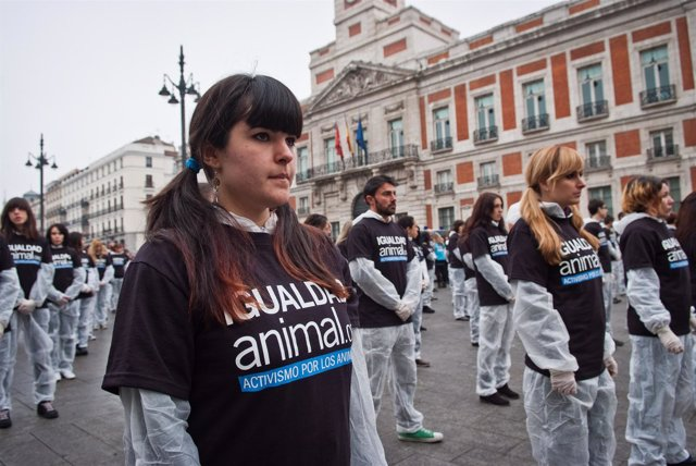 400 Activistas Han Reivindicado Los Derechos De Los Animales