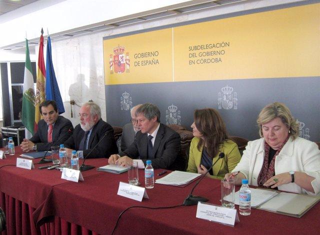 Comaparecencia De Ciolos En Córdoba