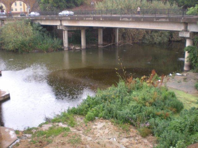 El Río Guadaíra Con Restos Del Vertido.