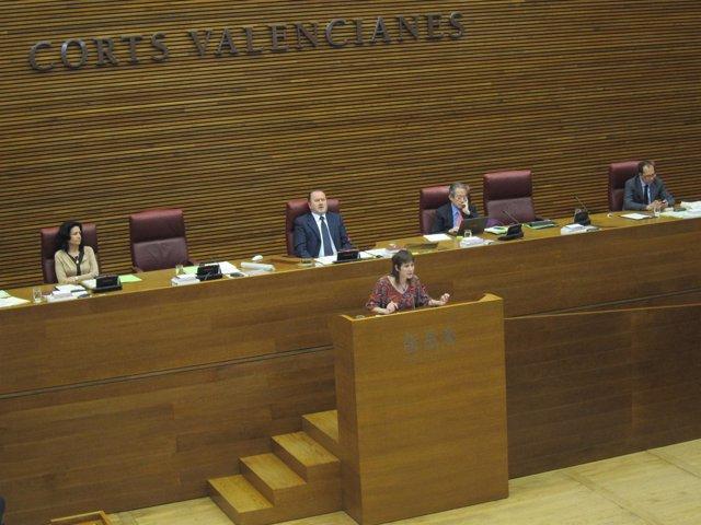 La Diputada De EUPV Marina Albiol Interviene En El Pleno