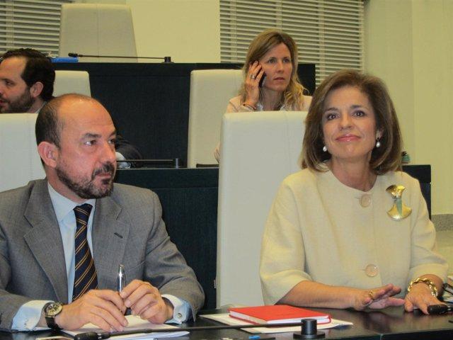Ana Botella Y Miguel Ángel Villanueva En El Pleno Del Ayuntamiento