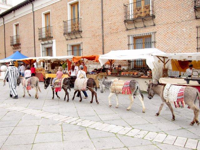 Imagen Del Mercado Castellano De Valladolid