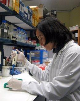 Investigadora trabajando en un laboratorio de la Universidad de Málaga