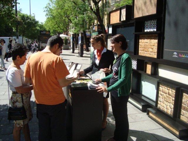 Expositor En La Calle Fuencarral.