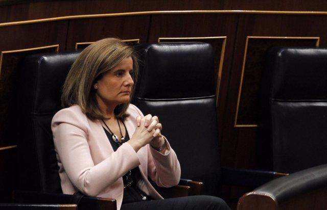 Fátima Báñez En El Congreso