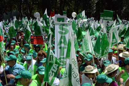 SATSE finaliza la campaña '#mayoverde' con la esperanza de hacer reflexionar al Gobierno