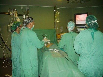 Los trasplantes salvaron 203 vidas durante 2011 en Euskadi, uno de los líderes mundiales en donaciones