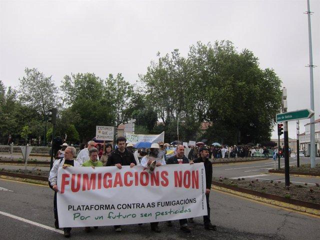Manifestación En Contra De Las Fumigaciones Aéreas