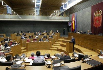 Navarra.- El Parlamento de Navarra acuerda recurrir al Constitucional los recortes en sanidad y educación