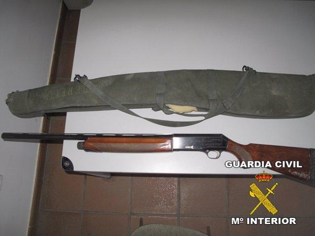 """Escopetas De Los Tres """"Furtivos"""" Sorprendidos En Doñana."""