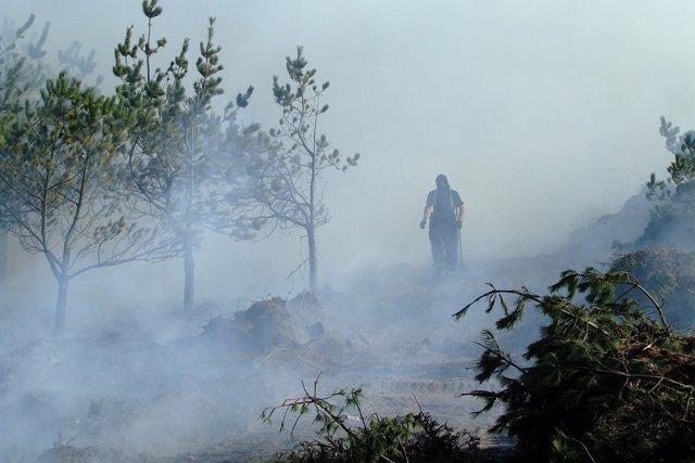 Imagen De Un Incendio Forestal