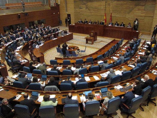 Pleno De La Asamblea De Madrid Del 10/11/11