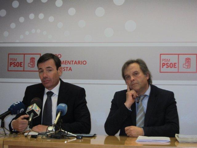 Tomás Gómez Y Carmona