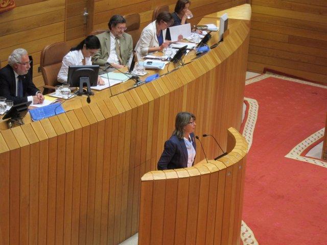 Foto Conselleira De Mar Pleno