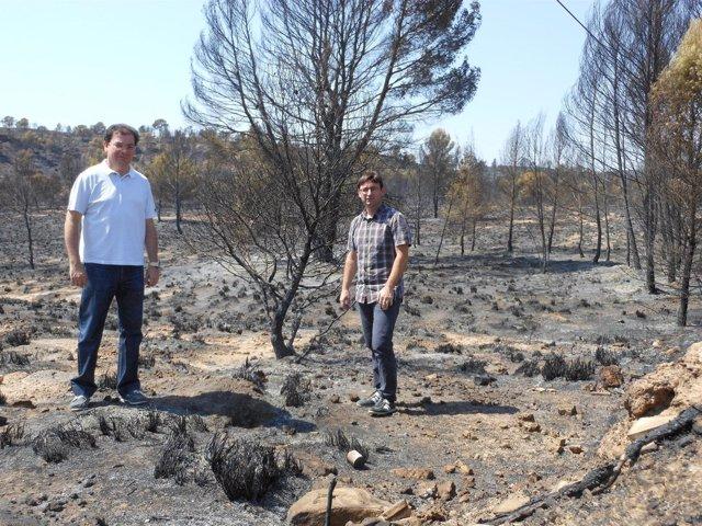 Martínez y Morcillo en la zona del incendio