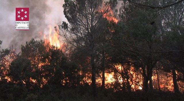 Imagen Del Incendio Declarado En Andilla