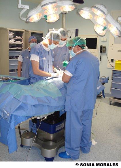 Segunda cadena de trasplante renal cruzado gracias a un donante altruista en España