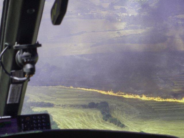 Un incendio quema unas ocho hectáreas de rastrojo y cereal.