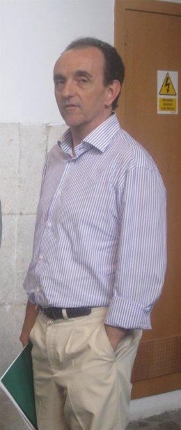 El consejero de Turismo y Comercio, Rafael Rodríguez