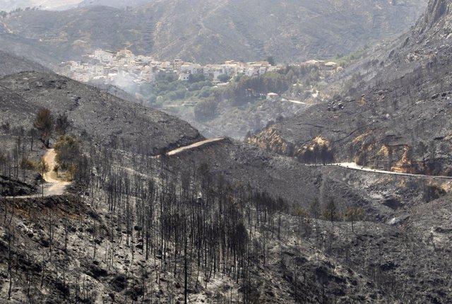 Imagen de los incendios de Valencia