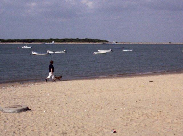 Río Guadalquivir a su paso por Sanlúcar de Barrameda (Cádiz)