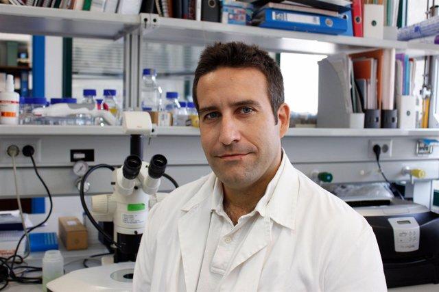 Claudio Asencio, Profesor De La UPO