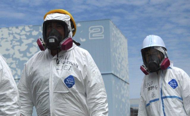 Radiactividad En Japón