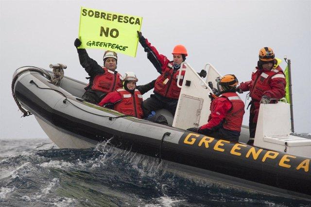 Activistas De Greenpeace Interceptan Un Barco Francés De Pesca De Arrastre