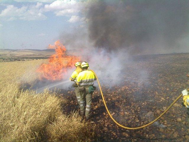Bomberos Trabajando En La Extinción De Un Fuego