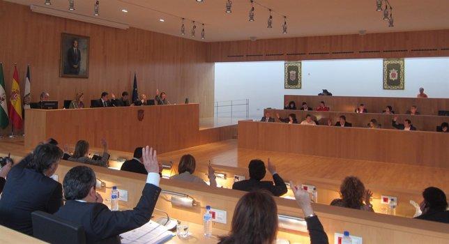 Pleno Ordinario De La Diputación De Marzo