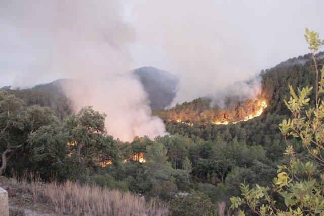 Incendio Del Empordà