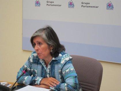 """Galicia.-BNG espera que Feijóo atienda a los sin papeles y que eso demostrará que la """"insumisión es posible y necesaria"""""""