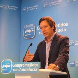 Carlos Floriano, vicesecretario de Organización y Electoral del PP