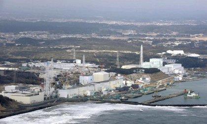 Examinan las consecuencias para la salud del accidente nuclear de Fukushima