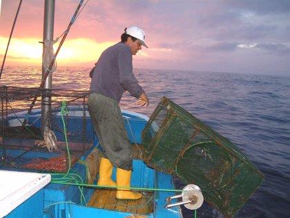 Economía/Pesca.- El Gobierno destinará 6 millones a la flota afectada por el acuerdo de la Unión Europea con Mauritania